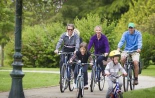 Location Vélos - B'O Cottage - Bagnoles-de-l'Orne