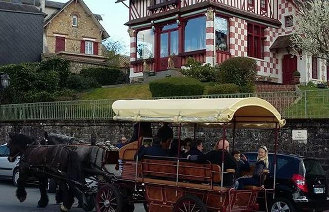 Calèche 4 - Bagnoles de l'Orne Normandie