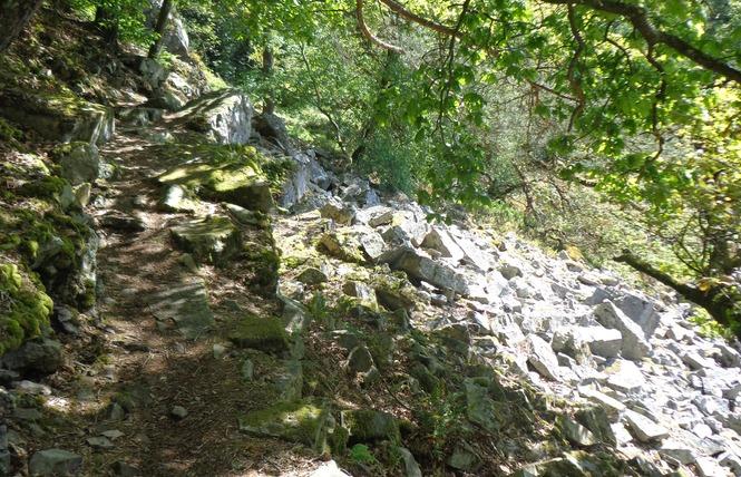 Gorges de Villiers 2 - Saint-Ouen-le-Brisoult