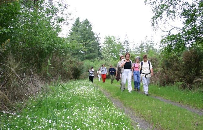 Randonnées pédestres accompagnées 1 - Bagnoles-de-l'Orne