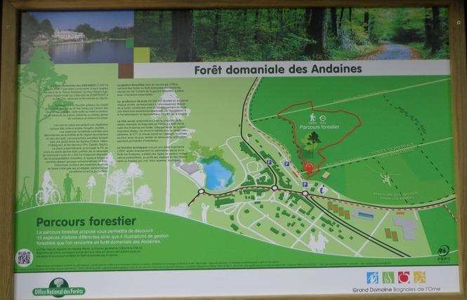 Parcours Forestier 2 - Bagnoles-de-l'Orne