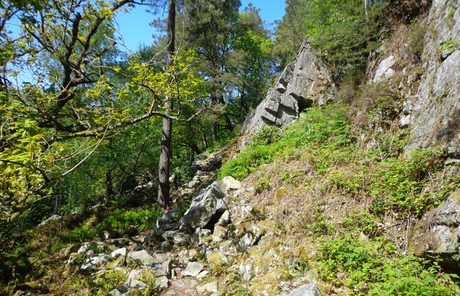 Gorges de Villiers 1 - Saint-Ouen-le-Brisoult