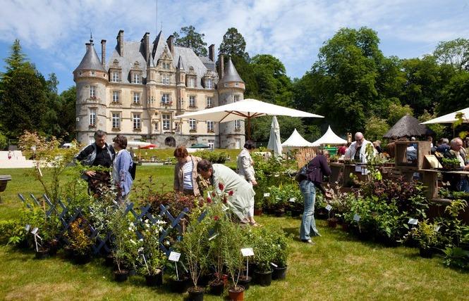 Fête des Plantes : 10e édition 2 - Bagnoles-de-l'Orne Normandie
